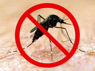 Socorro! O Rio Vermelho está entre os bairros com maior número de denuncias sobre focos Aedes aegypti