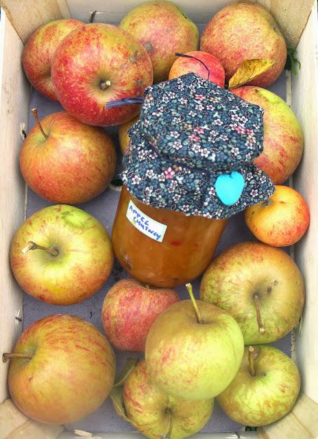 pittige appelchutney