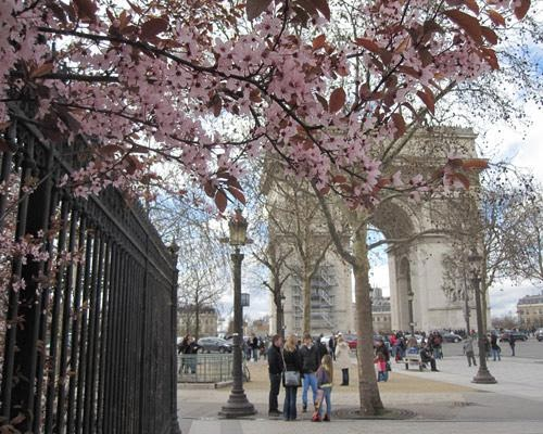 the most beautiful places in the spring