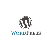 WordPress için Arama Kutusu (Arama Formu) Nasıl Yapılır?