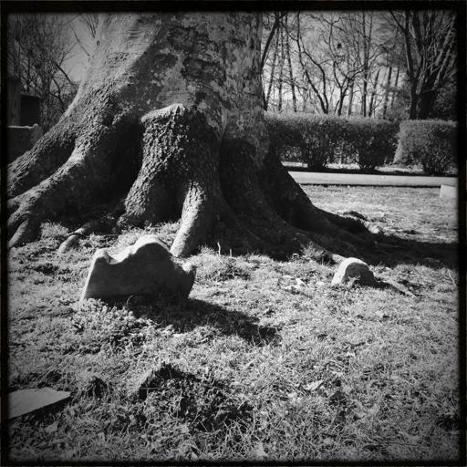 Image of sunken grave marker, Dumfries, Virginia.