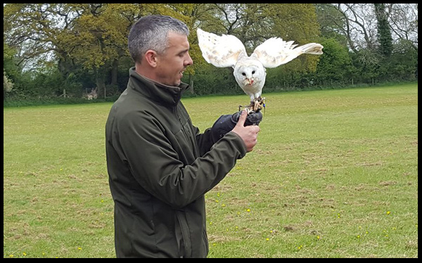 We all got the opportunity to call Cyril, the Barn Owl over and have him land on our arm, even the youngsters got to hold him, and was lovely to see my son so amazed and in awe of these birds.  They have such character and Cyril very much stole the show.