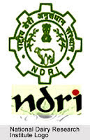 NDRI Karnal Recruitment