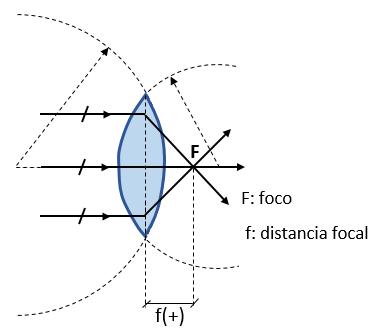 cad310b56f Son aquellas que se caracterizan por hacer converger (juntar) en un punto,  los rayos paralelos que inciden en una de las caras de la lente.