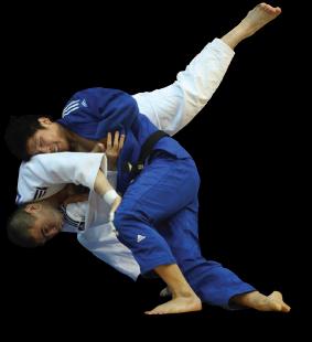 judo martial arts