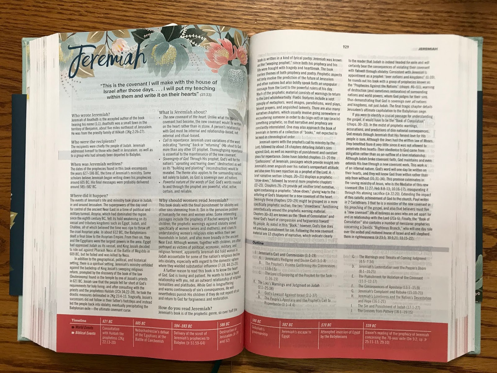 The McClanahan 7: Study Bible for Women Review