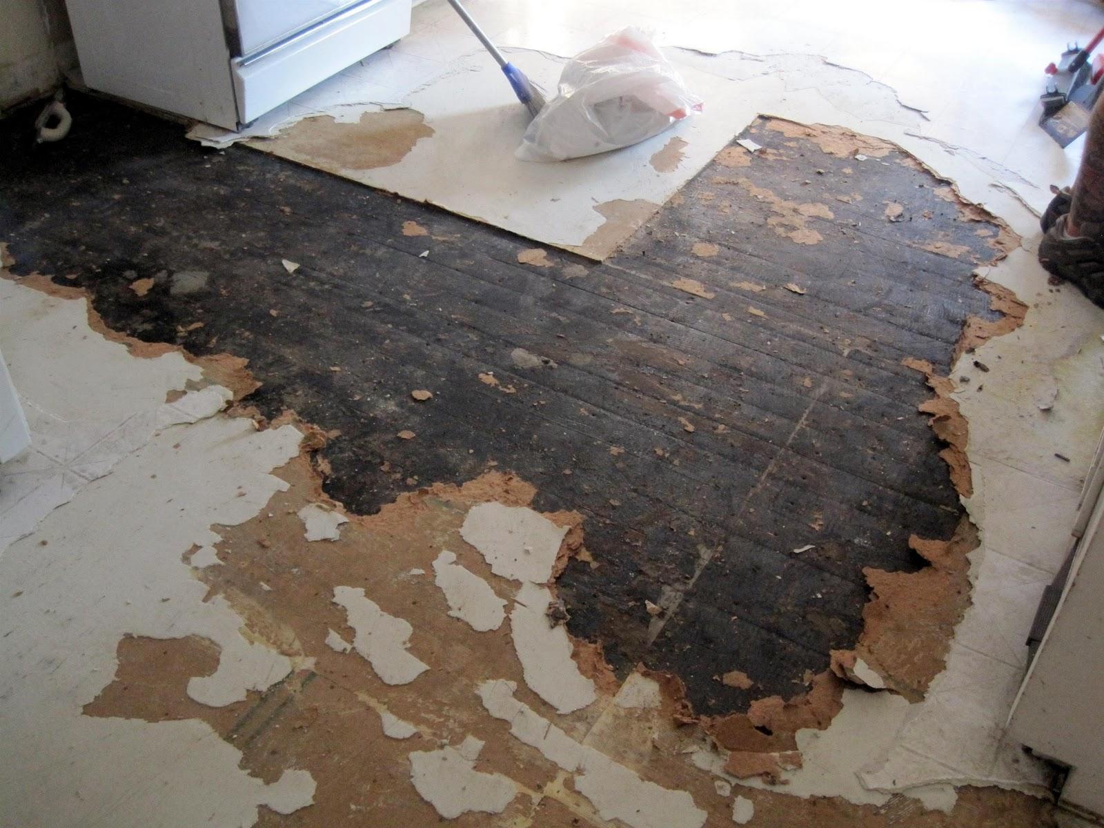 Russet Street Reno Kitchen Destruction Pt 2