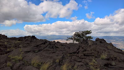 North slope of Mount Etna - surreal landscapes looking north. Lava, lone pines, and beautiful sky.