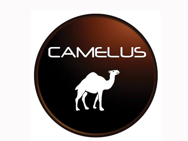 Camelus : Produk Susu Unta pertama di Malaysia