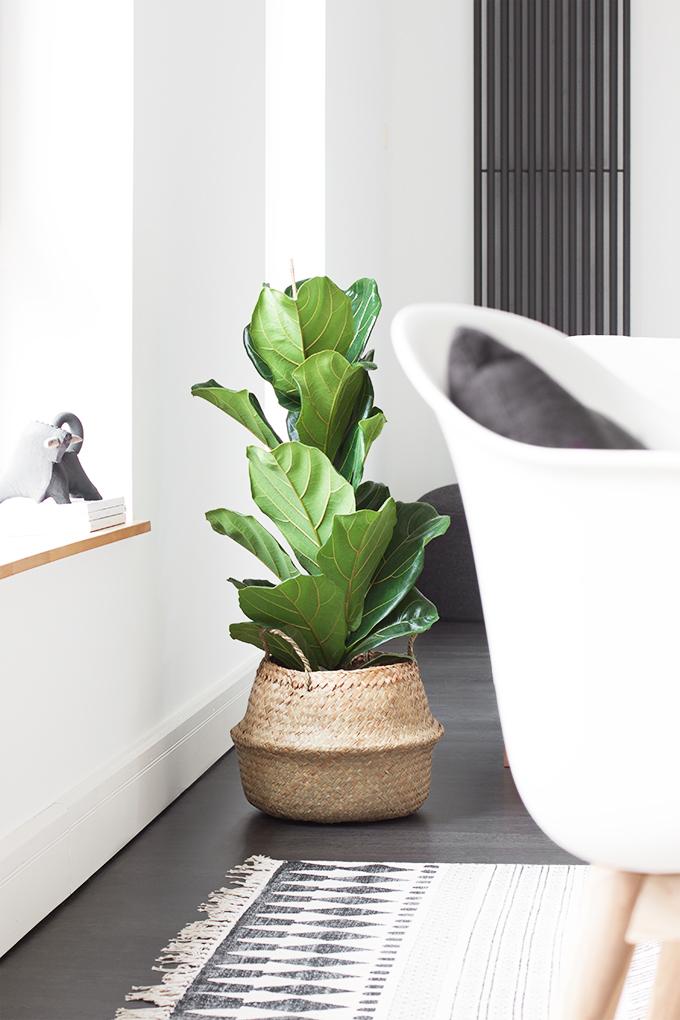 bildsch nes mut zur feige living. Black Bedroom Furniture Sets. Home Design Ideas