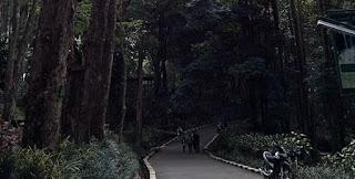 Taman Hutan Raya Ir. H. Djuanda