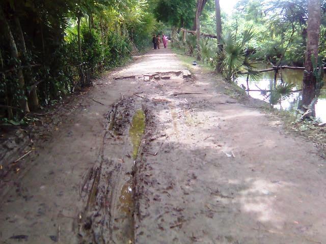 Lense Of Mobile Bangladeshi Village Road Photo