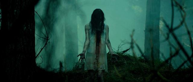 A Morte do Demônio (2013) | Resenha
