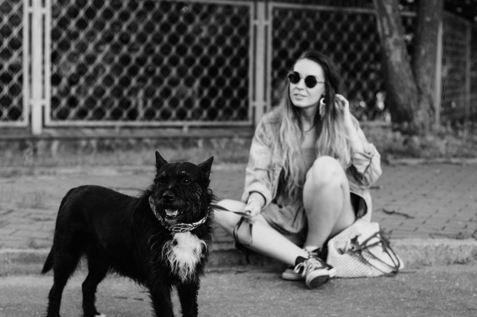 sesion with dog
