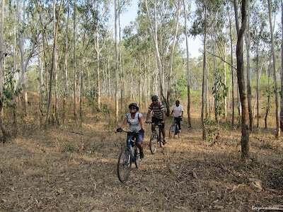 Off road cycling in Turahalli Forest