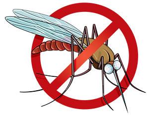मच्छरों से बचाव के उपाय और तरीके