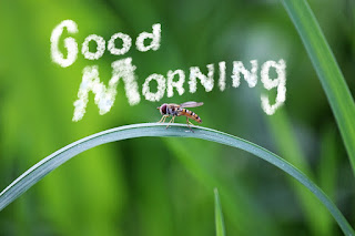 sweet good morning messages in hindi