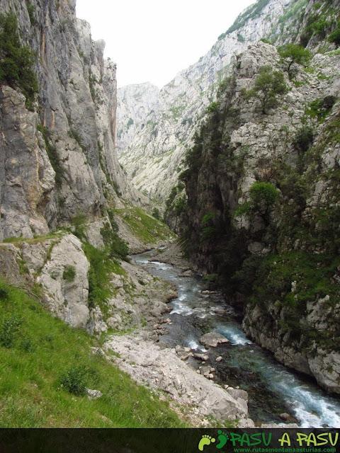 Senda baja del Cares y río Cares