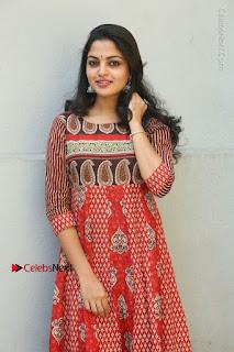 Telugu Actress Nikhila Vimal Latest Stills in Anarkali Dress  0080.JPG