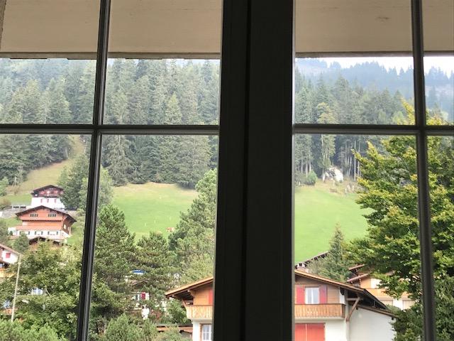 スイス・アデルボーデン・ザ・カンブリアン・ホテルからの眺め