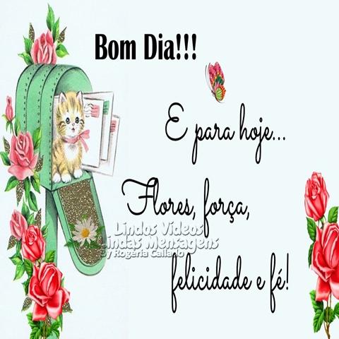 E para hoje...  Flores, força,  felicidade e fé!  Bom Dia!!!