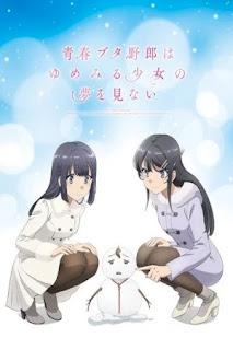 Seishun Buta Yarou wa Yumemiru Shoujo no Yume wo Minai 1080p