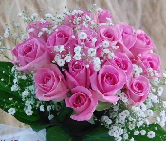 Feliz Cumpleaños Laurita 50 Arreglos Florales Para Ti