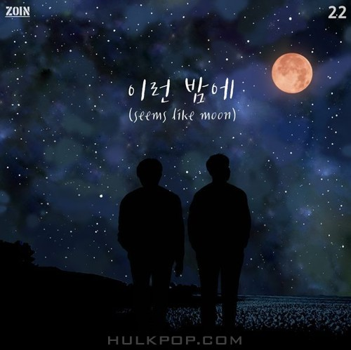 ZOIN – Seems Like Moon – Single