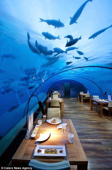 "The price for dinner for one person is $320 or £190. - The ""Most Beautiful Restaurant In The World"" Is Downright Mind-Blowing."