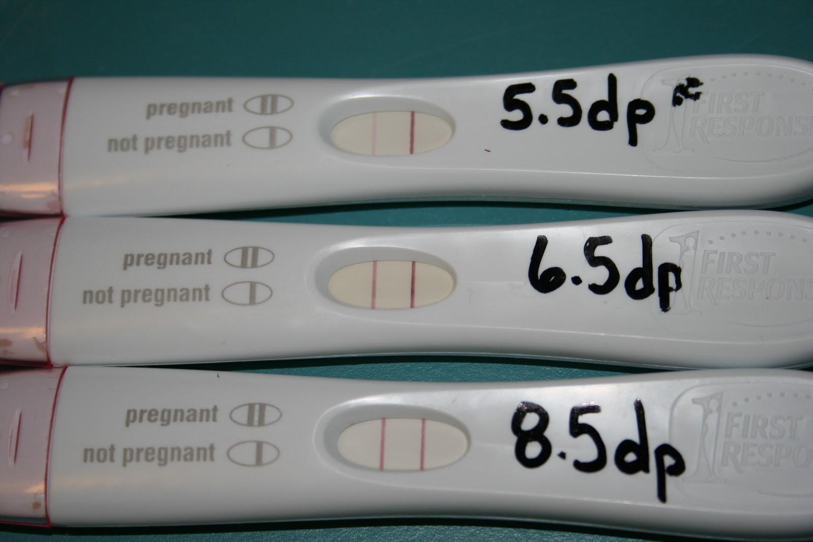 Our Journey Through Embryo Adoption The 2 Week Wait