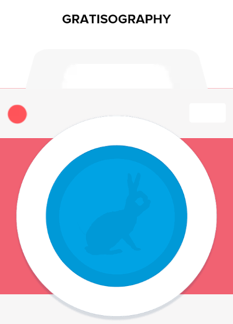 WS Blog Gratisography