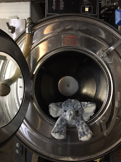The elephant in a washing machine, pre-wash
