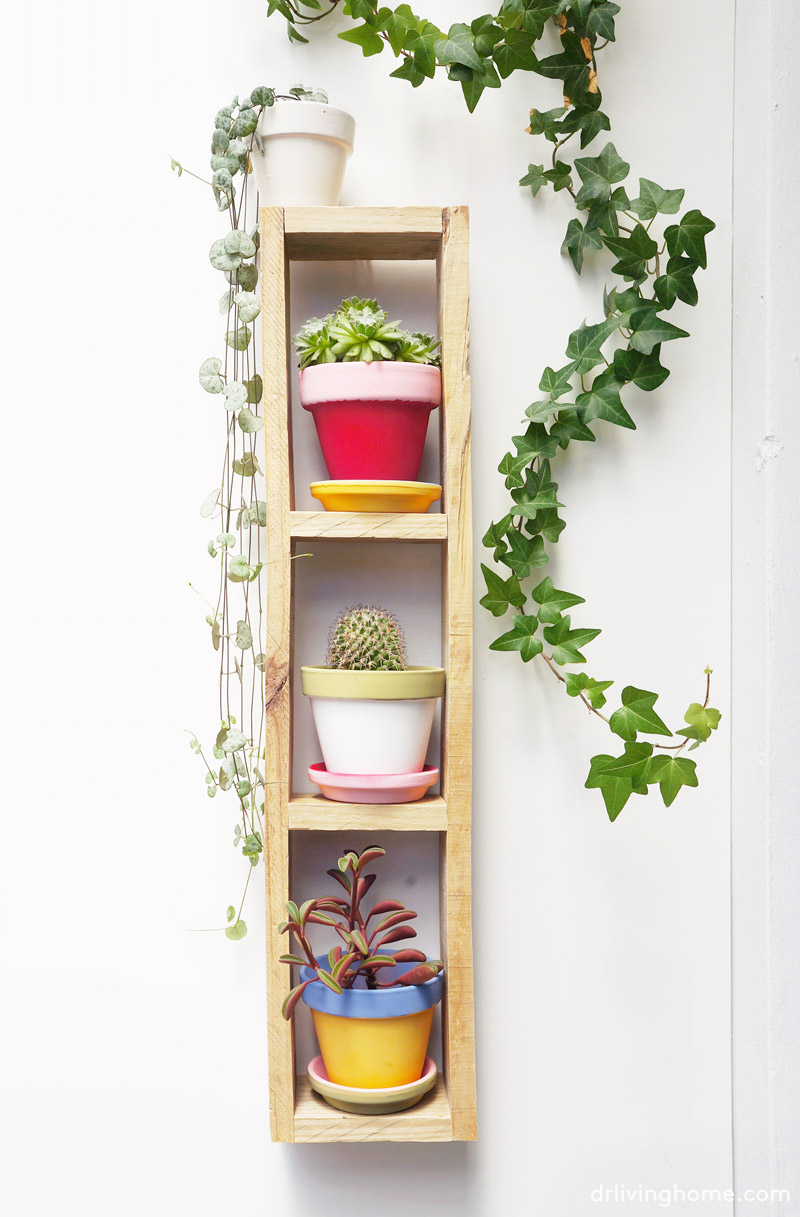Diy jardín vertical mini