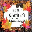 2011 Gratitude Challenge