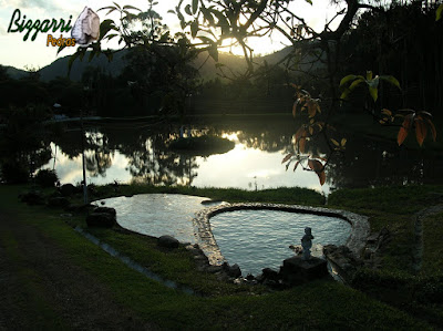 Execução da piscina natural com pedras com o passeio da piscina com o piso de São Tomé com execução do lago com o ilha e os muros de pedra.