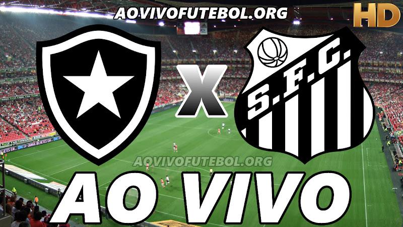 Botafogo x Santos Ao Vivo na TV HD