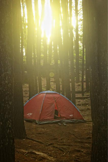 Jogja Seksi 1: Camping Di Hutan Pinus Imogiri. Main Ke Tempat Mainstream, Lakukan Hal Yang Enggak Mainstream Dong!