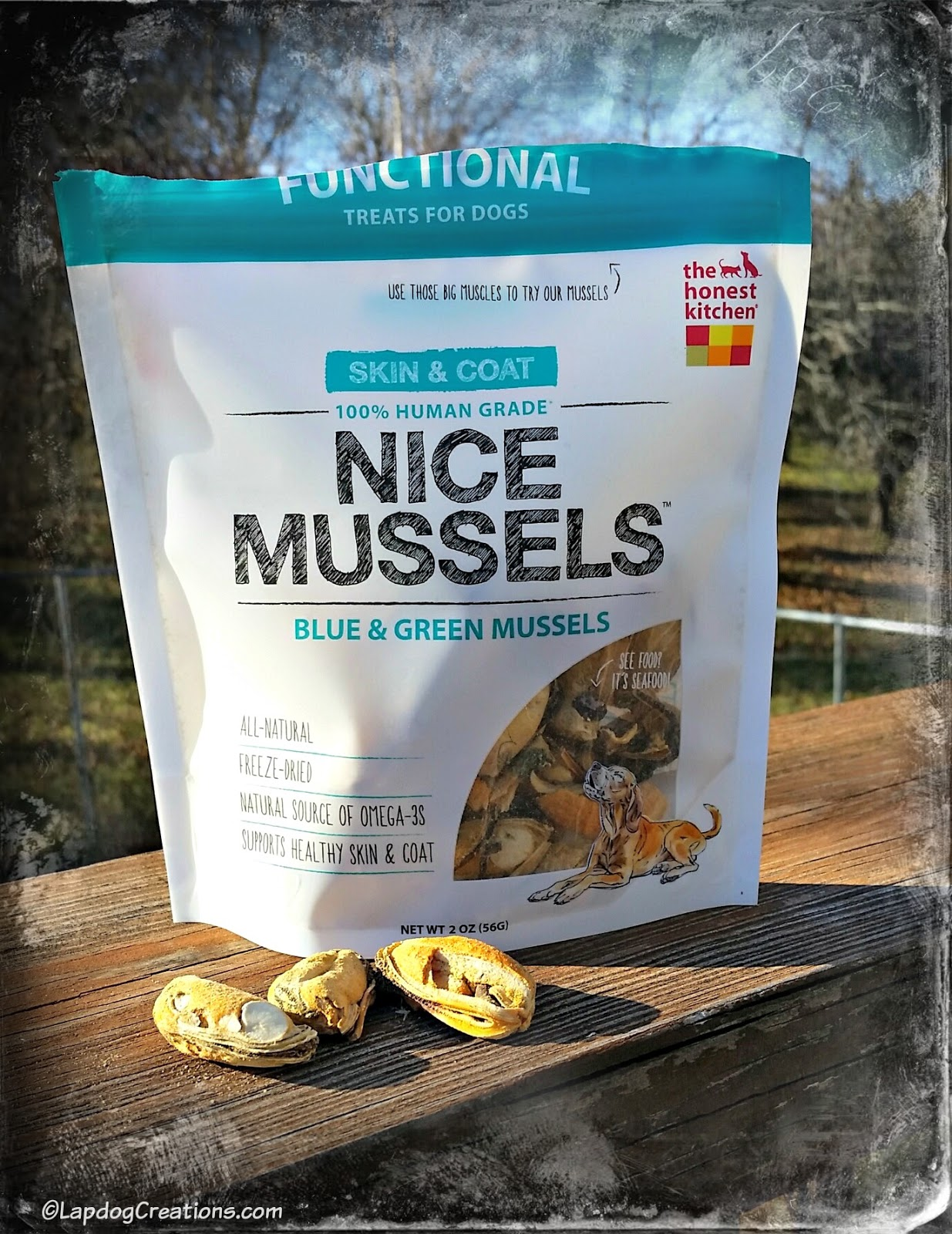 Superbe The Honest Kitchen Mussels Dog Treats