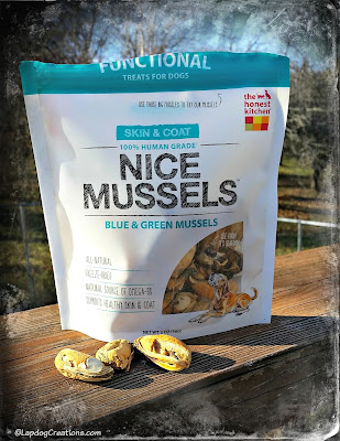 the honest kitchen mussels dog treats
