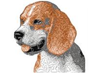 http://www.embroiderydesignsfreedownload.com/2017/11/beagle-hunting-dog-free-machine.html