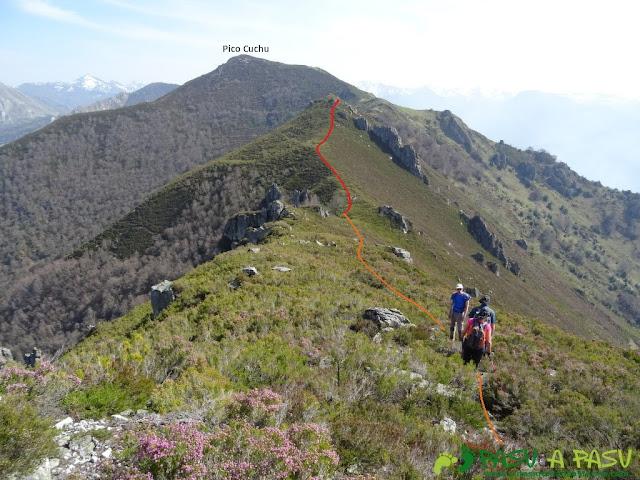 Tramo entre la Forcada y el Pico Cuchu. Abundante vegetación