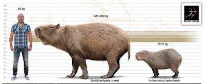 Josephoartigasia Mones - Giant Ice Age Mammals