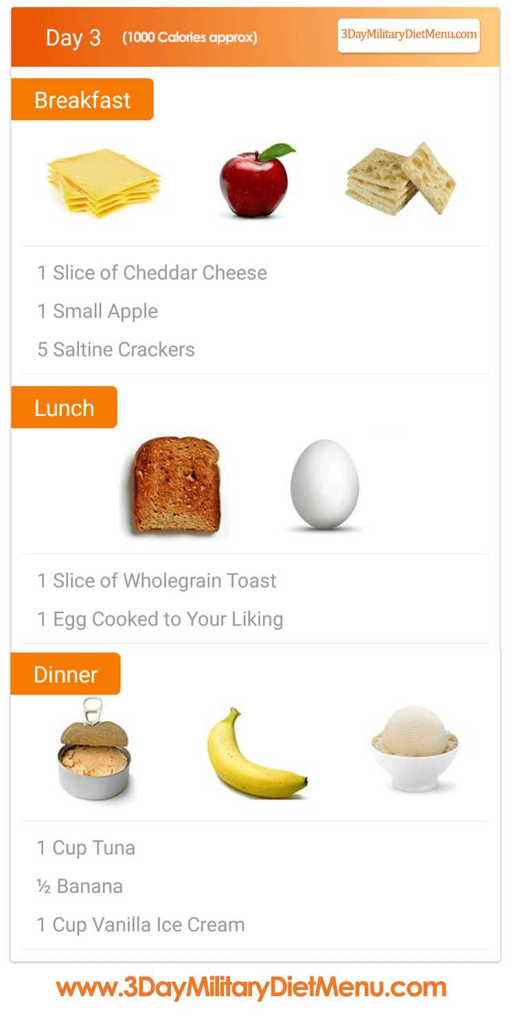 Military diet day meal plan also for weight loss reviews pros  cons rh daymilitarydietmenu