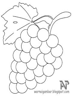 Mewarnai Anggur Mewarnai Gambar