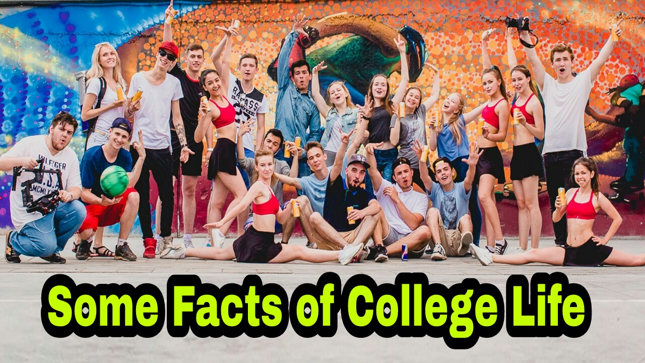 Some Facts of My College Life - facts about college life