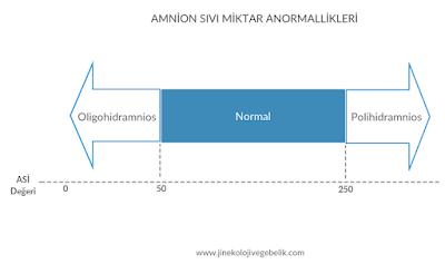 amnion sıvısı, oligohidramnios, polihidramnios