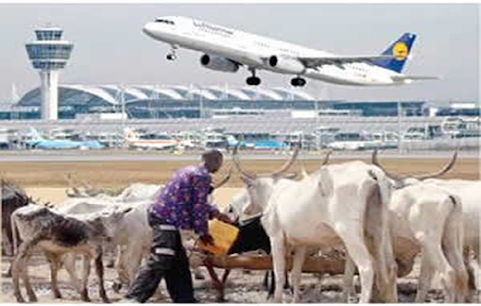 Akure Airport Invision By Herdsmen: OPC to secure passengers