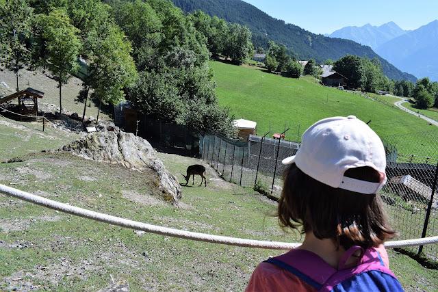 Mont-Avic-Parco-Faunistico