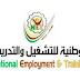 فتح باب التسجيل لدى الوطنية للتشغيل والتدريب على المهن الانشائية مع مصروف - بدل مواصلات