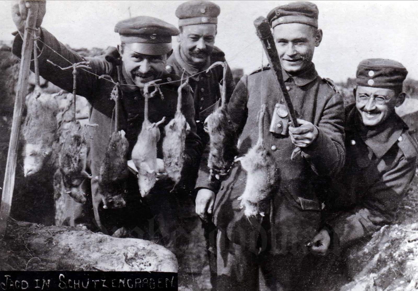 Rats on German trenches. The rat problem remained for the duration of the war (although many veteran soldiers swore that rats sensed impending heavy enemy shellfire and consequently disappeared from view).